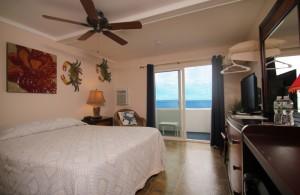 Oceanfront Queen Room 1 - First Floor - Pet Friendly
