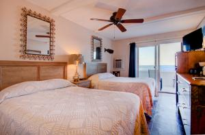 Oceanfront Standard Room 3 - First Floor - Pet Friendly