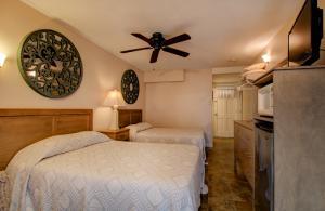 Oceanfront Standard Room 4 - First Floor - Pet Friendly