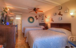 Oceanfront Standard Room 5 - First Floor - Pet Friendly