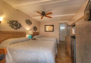 Oceanfront Standard Room 6 - First Floor - Pet Friendly